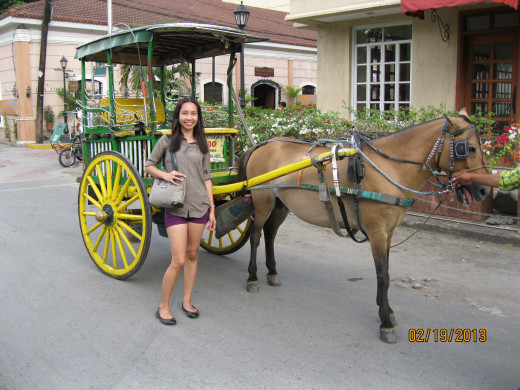 I had a great time trying to ride this transportation