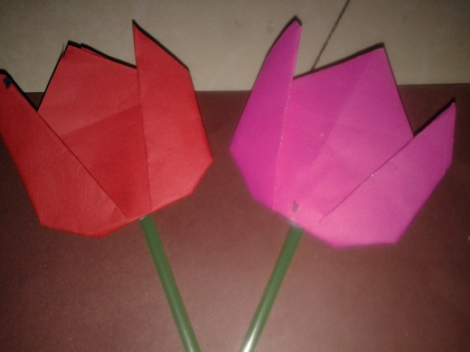 Tulip Flowers Made From Origami