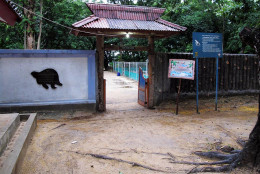 The entrance to the egg laying and hatching beach at Pangumbahan.