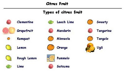 "Click on the link below for a more clear and readable picture of this. This webpage says ""All citrus fruit is acid fruit.  The acid fruits are the most detoxifying fruits and excellent foods."""