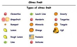 """Click on the link below for a more clear and readable picture of this. This webpage says """"All citrus fruit is acid fruit.  The acid fruits are the most detoxifying fruits and excellent foods."""""""