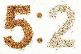The Fast Diet or the 5:2 Diet