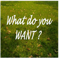 What Do You Want ? (Poem)