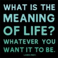 My Search for the Meaning of Life