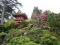 10 San Francisco Bay Area Parks to Enjoy the Outdoors