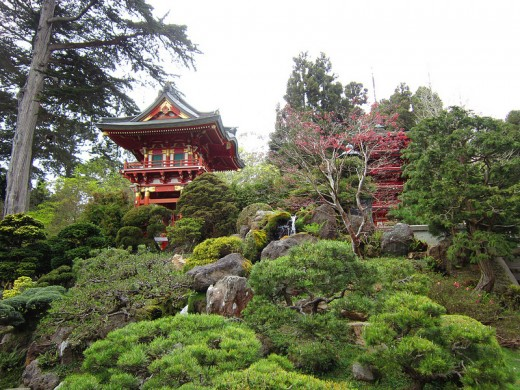 The Japanese Tea Garden located in Golden Gate Park in San Francisco, California.  Just one of the beautiful places to enjoy outdoors in the Bay Area.