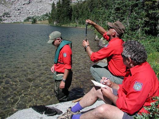 Biologists studying fish population.