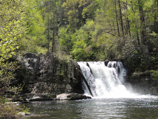 Abrams Falls in Great Smoky Mountain National Park