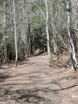 Picture of the flat portion of the trail