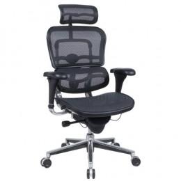 Ergohuman Mesh Ergonomic Office Chair