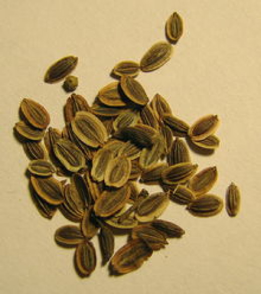 Dried seeds