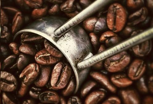 Beautiful Coffee Beans!