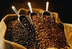 A Coffee Primer - Part 2: Know Your Roast