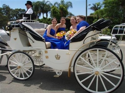 Horse Drawn Carriage With Bridesmaids