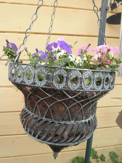 I love this planter. At least I get to have some flowers in my yard this year - they just have to be in hanging container planters.