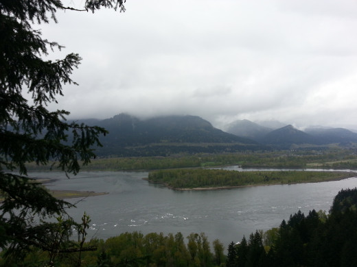 Scenic views of the Columbia River Gorge abound on this hike.