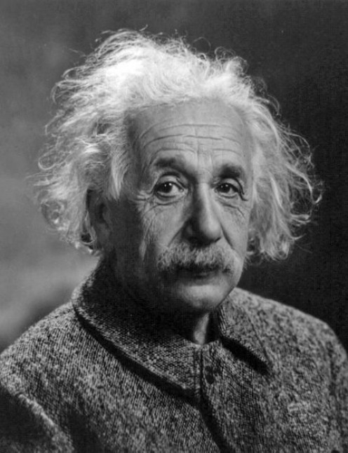 Albert Einstein was made a Nobel Laureate for his contribution to Theoretical Physics. The award was granted in 1921.