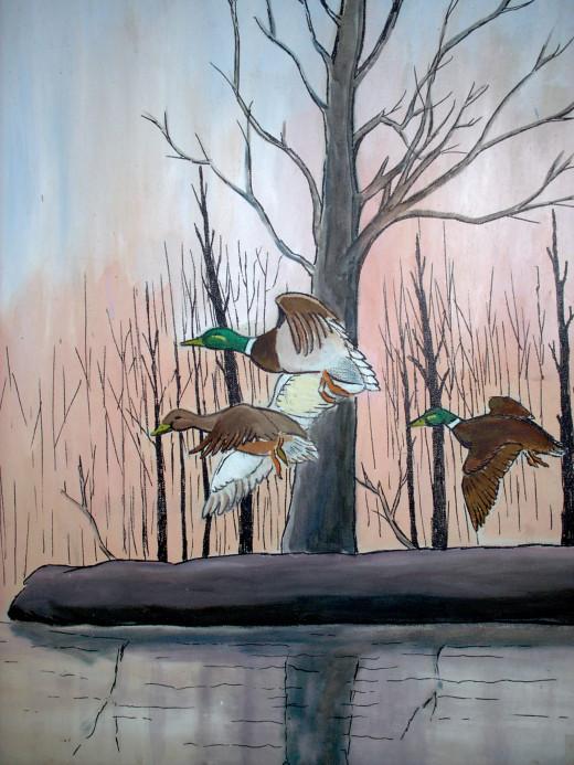 wild duck fly