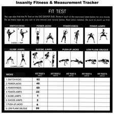 Insanity Fit Test by Beach Body
