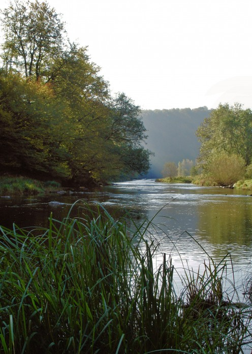 The Semois at Herbeumont