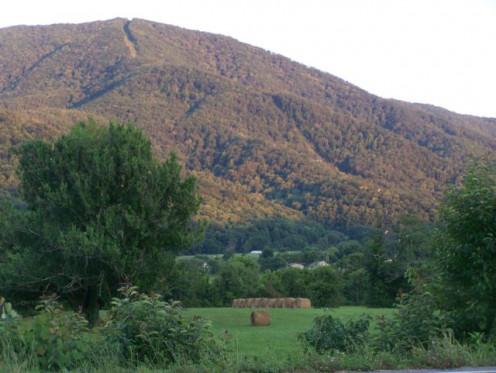 Smoky Mountain Splendor