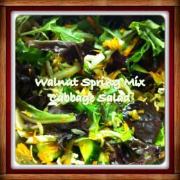Walnut Spring Mix Cabbage Salad