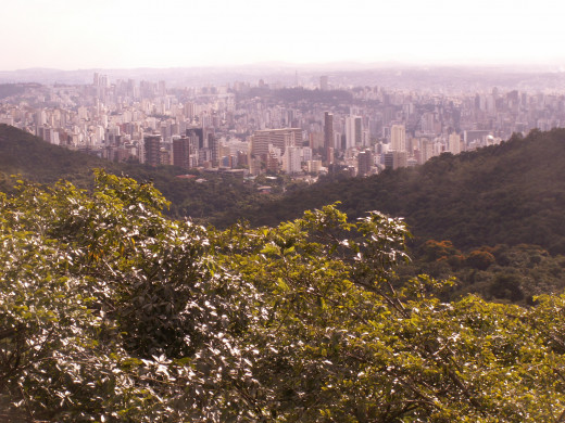 The view of the city from the Nature Park in Belo Horizonte
