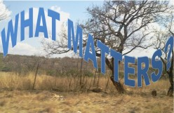 What Matters? Life Matters By All Odds (Perspectives)