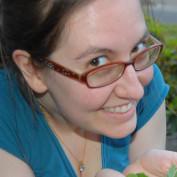 sideyardflock profile image