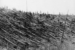 Tunguska Event: Dress Rehearsal for Armageddon?