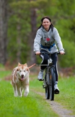 Taking the dog out in the park can mean regular exercise for any member of the family. Use this excuse to convince your parents to get you a pup.