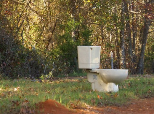 Take your toilet outside if you can!