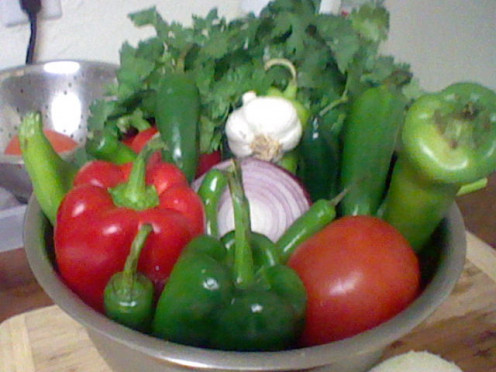 For best results, always choose Fresh Organic Veggies. Cilantro, Anaheim peppers, Jalapenos, Pasilla peppers, chili peppers, bell peppers, garlic, tomatoes, lime.