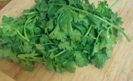 Toss your entire bunch of Cilantro into blender. Pulse again.