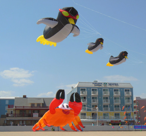 Whether you're the one flying a kite, or looking up at one being flown by someone else, big bright kites like these at Ocean City, MD. are delightful to look at!