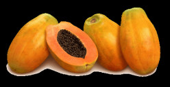 Papaya the wonder fruit: Benefits of Papaya
