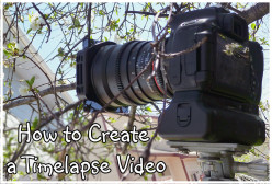 How to Create a Timelapse Video