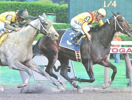 Rachel Alexandra (right, above), a filly, won the Preakness Stakes in 2009.