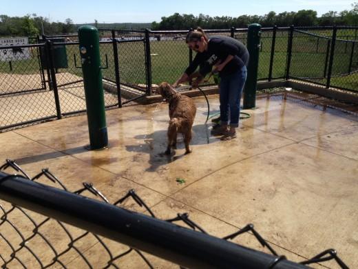 Cedar Park Bark Park Dog Wash - Cedar Park TX