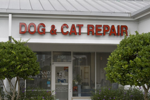 How could you not go here?  Dog and Cat Repair at its new location is 987 SE Monterey Road; Stuart, FL 34994. 772-287-2513
