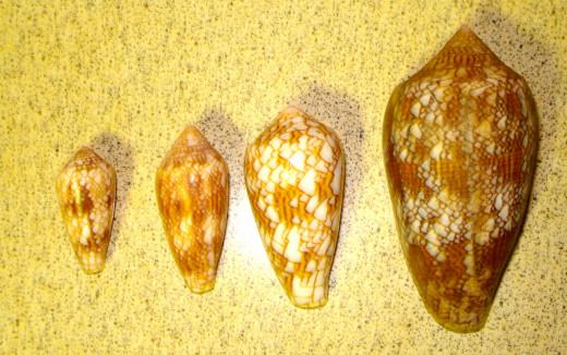 Textile Cones