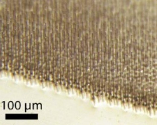 The Surface of a Silicon Wire-Array Solar Cell Looks Like a Carpet