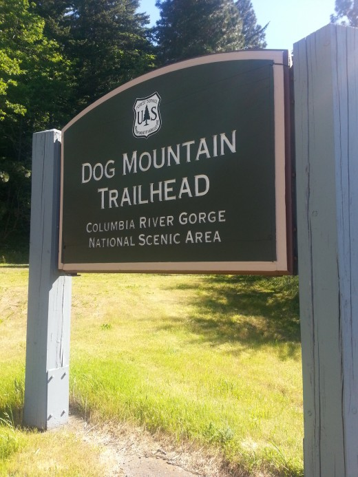 The large Dog Mountain Trail Head sign