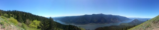 The Columbia River Gorge views from Dog Mountain stretch as far as the eye can see.