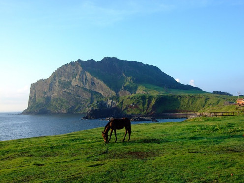 Cheju Island, South Korea, a vacationers' and honeymooners' paradise. We do not want it destroyed.