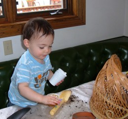 My grandson helping me do some potting of flowers.