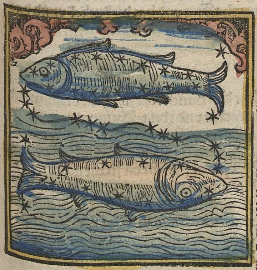 Pisces Fishes Woodcut by Johannes Regiomontanus