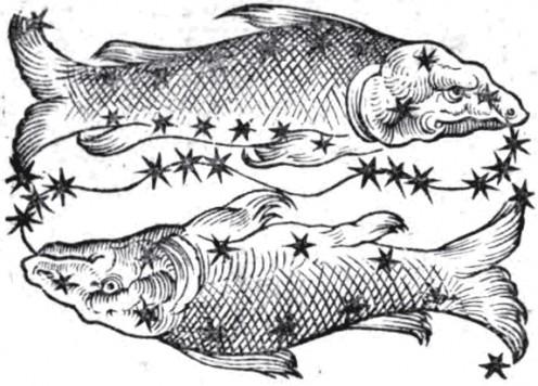Pisces by Guido Bonatti