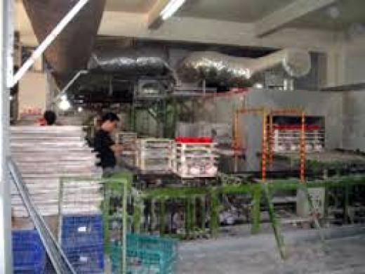 A ceramics factory
