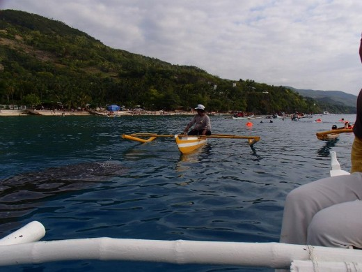 Oslob, Cebu, Philippines - Swimming, Snorkeling, Diving With The Whale Sharks